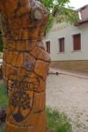 """A """"sárkányfa"""" a Községháza előtt"""