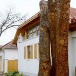 a mézeskalács óvoda és a mesefa (10)