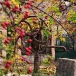 Kút a Kossuth utcában ősszel