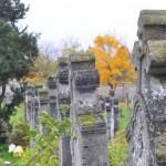 őszi temető (3)