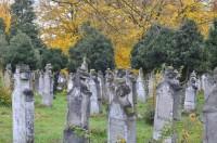 Őszi temető