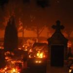 temető (2)